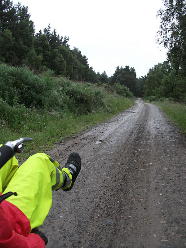 The National Cycle Route after Avimore.